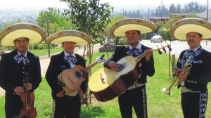 !!!los mejores musicos de latinoamerica en tu domicilio: (022) 301 63