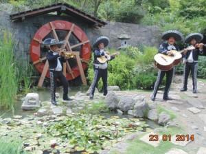 serenatas en todo chile:07-9617068  mariachi tierra nueva