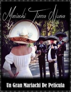 serenatas y mariachis en el bosque:07 961 70 68