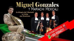 mariachi mexicali  serenatas en santiago lo mejor