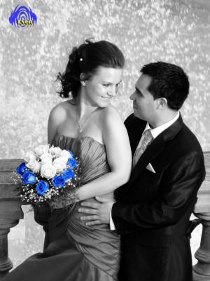 amplificacion, iluminacion, arriendo, servicios, matrimonios, fiestas