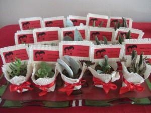 cactus souvenirs recuerdos para eventos en general