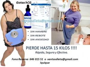 gotas hcg 1234 para adelgazar 15 kilos en 42 dias