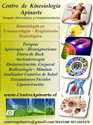 centro de kinesiologia y terarapias alternativas apinmorte